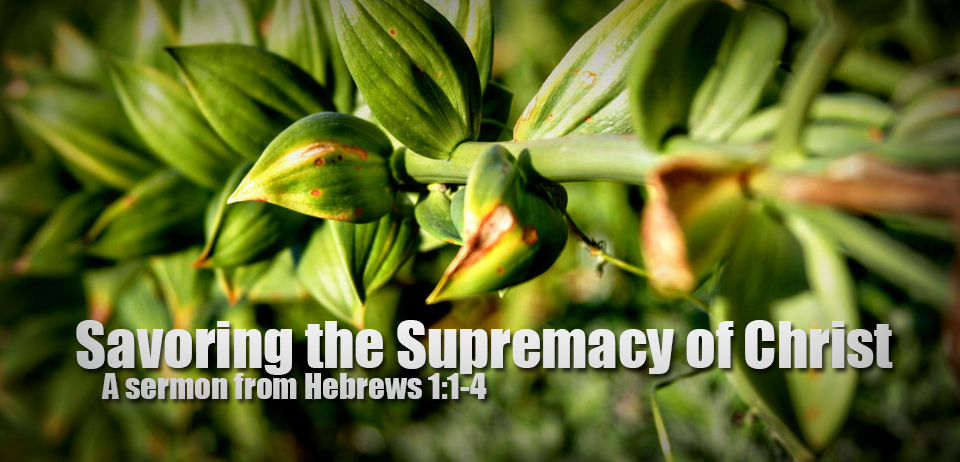 Savoring Supremacy of Christ Banner